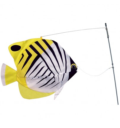 SWIMMING FISH BUTTERFLY FISH