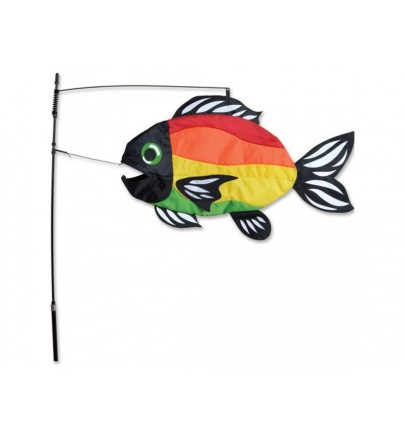 PK SWIMMING FISH - BRIGHT RAINBOW